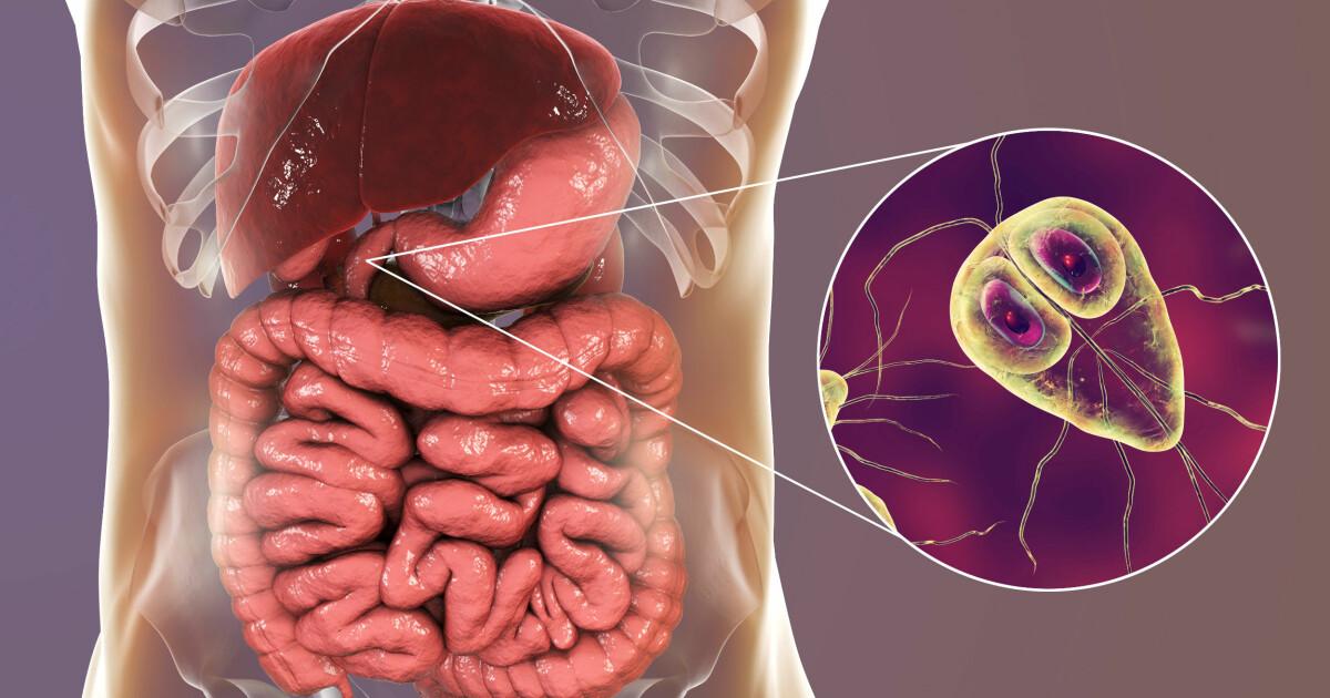 papilloma vírus és terhességi kockázatok rák genetikai kapcsolata