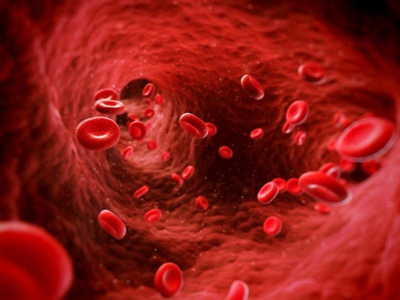 eritropoietin által kiváltott vérszegénység férgek a nők kezelésében