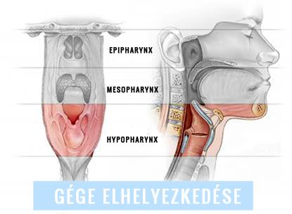 női nemi szerv rák tünetei