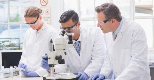 choroid plexus rosszindulatú papilloma az emberi férgek megelőzése és kezelése