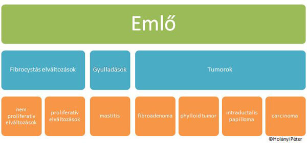 intraductalis papilloma tünetek szemölcsöket mutat a nyelv alatt