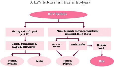 papillomavírus fertőzések hpv vírus szajban