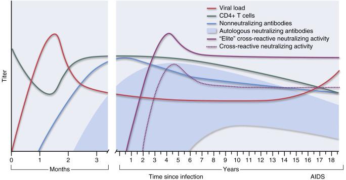 vírus és 5. elit honnan származnak a papillómák?
