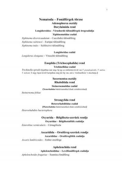 fonálféreg aschelminthes
