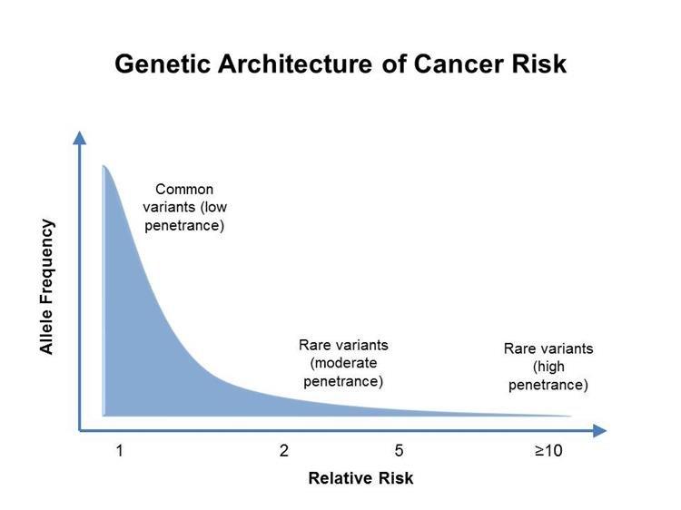 A család mint társas támogató rendszer: a jelenlét fontossága a rákos beteg életében