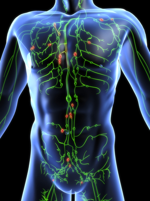 Mit kell tenni a papillomavírus kezelésére