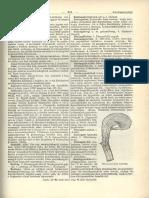 III. OSZTÁLY: GALANDFÉRGEK (CESTODARIA RUD.) | Brehm: Állatok világa | Kézikönyvtár