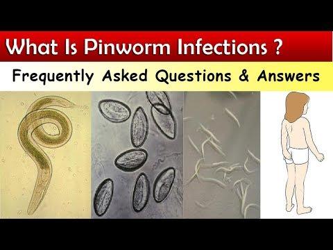 papilloma fibroepithelialis papilloma vírus és szemölcsök